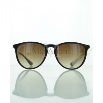 a47836ded2f Ray Ban RB4171 631513 Erika Classic Sunglasses