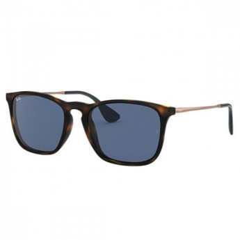 RB 4187 Sunglasses  by Ray Ban