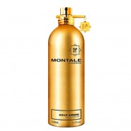 Montale Aoud Ambre EDP Spray