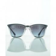 Ray Ban  RB4221 6226/8G  Matte Sunglasses