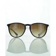 Ray Ban  RB 4171 631513 Erika Classic Sunglasses