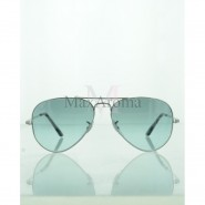 Ray Ban RB3689 Evolve Sunglasses