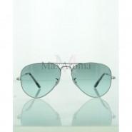 Ray Ban RB3689 Evolve Sunglasses