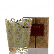 NEST Fragrance Spiced Orange & Clove Classic Candle 8.1oz