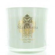 Tiziana Terenzi Spicy Snow Two-Wick Foco Candle
